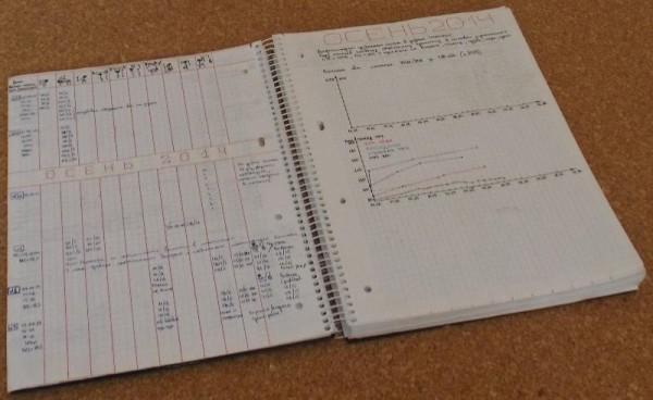 Дневник тренировок (разворот)