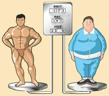 Индекс массы тела для культуриста и обычного человека