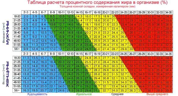 Таблица соответствия процентного содержания жира в организме по абдоминальной складке