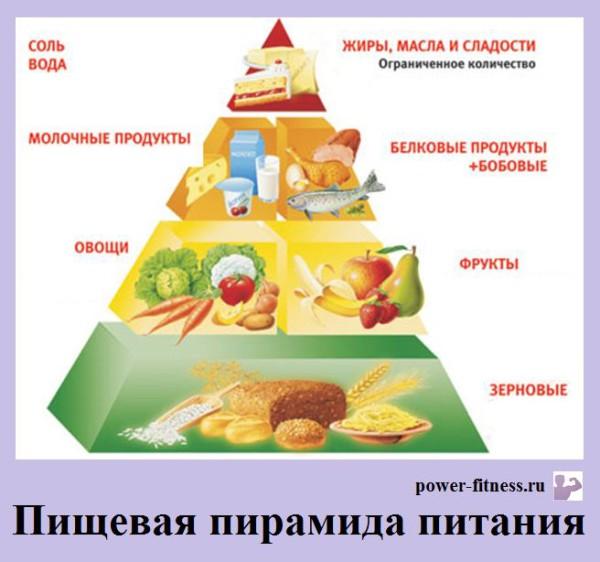 пищевая пирамида питания
